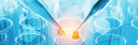 Mosaiques Diagnostics | Protein Analysis for Clinical Diagnosis and Pharmaceutical Research